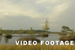 Small islands in the lake. Autumn daytime. Smooth dolly shot