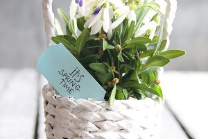 It's Spring Time - hand-written tag and Bouquet of snowdrops in a wicker basket