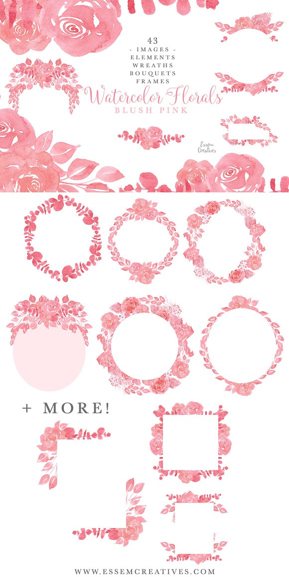 Blush Pink Watercolor Floral Clipart