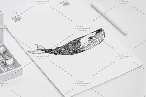 Patrick Whale Hand Drawn