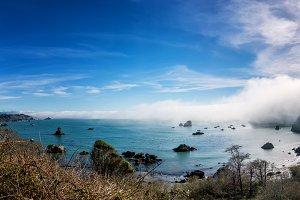 Shoreline Beach Scene from Northern California