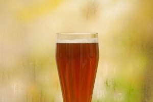 Autumn beer