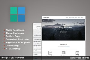 Acelin Pro - Corporate Minimal Theme