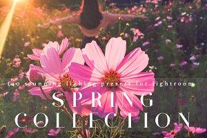 Stunning Spring Lighting Lr Presets
