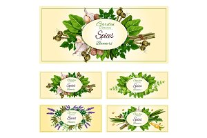 Fresh herbs, spices and condiments banner set