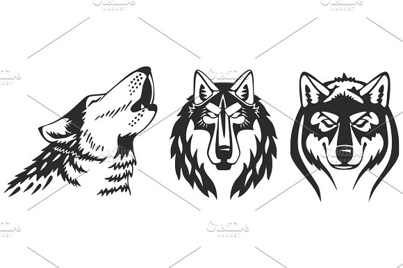 Wolfs Vector Heads