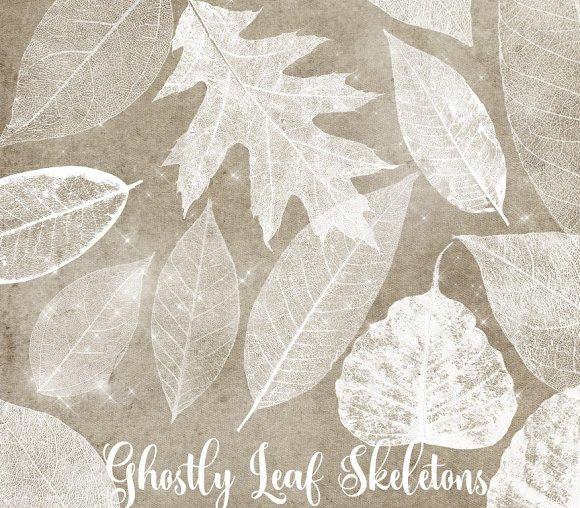 White Leaf Skeleton Overlays