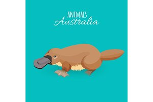 Australia animal brown crawling duckbilled platypus isolated on azure background