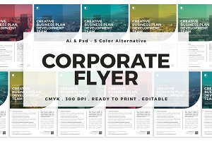 Corporate Flyer -5 Color Alternative