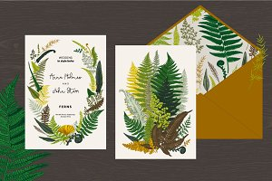 Ferns. Wedding set