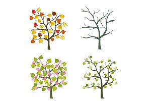 Trees seasons vector set
