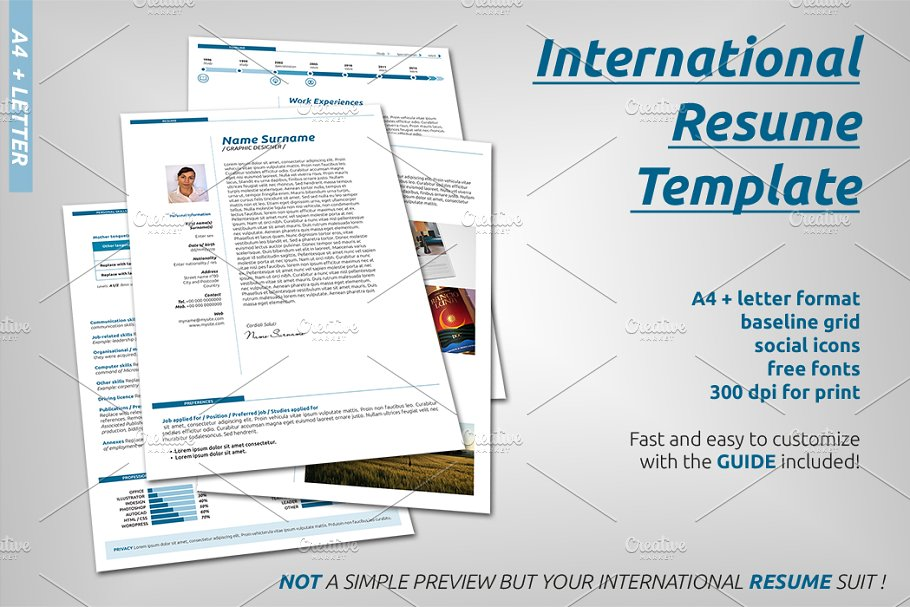 International Resume Template in Resume Templates - product preview 8