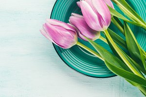 Spring easter purple tulip floral green pastel color background