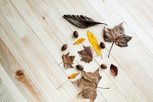 Dried leaves in autumn on wooden tab