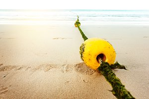 Seascape with rope and buoy