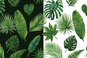 Tropical Greens