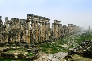 Great Colonnade Apamea in fog, partially destroyed by ISIS Syria