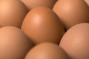 Background of eggs.