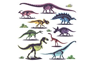 Skeletons of dinosaurs silhouettes set fossil bone tyrannosaurus prehistoric animal and jurassic monster predator dino vector flat illustration.