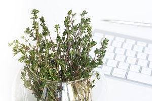 Feminine desktop with green thyme