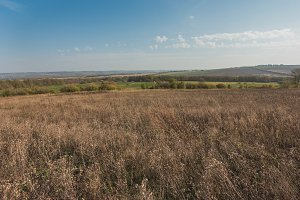 Russian fields - summer Meadow - ural landscape