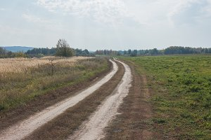 Rural road at summer Meadow - russian countryside landscape