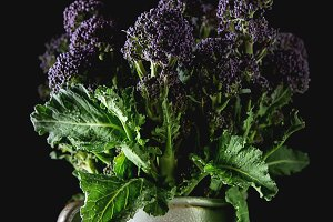 Fresh purple broccoli in a mug. Vegan food. Dark background.