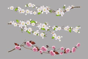 Tree branch, spring flowers vector