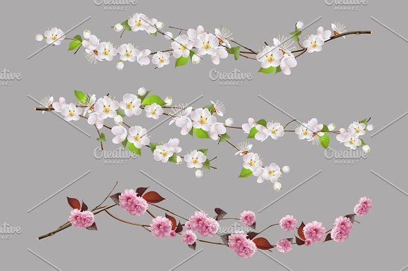 Tree Branch Spring Flowers Vector