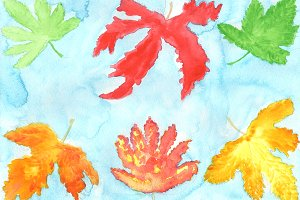 Maple Leaves Watercolor Clip Art