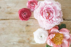 Pink flowers on wood, high res