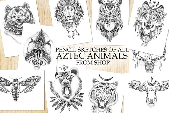 All Aztec Animals Pencil Sketches