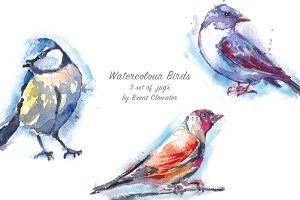 Watercolour Birds 3 set of jpg's