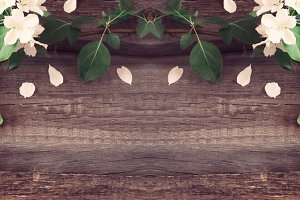 Rustic boards background with branches of flowering apple trees