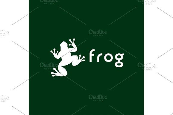 Frog Illustration Vector Trend