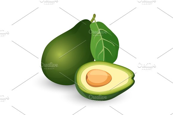 Ripe avocado cut in half with leaf vector illustration.