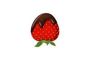 Strawberry and chocolate vector illustration isolated on white background