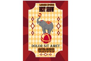 Circus best show with elephant