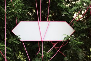 Empty arrow sign in the middle of fir branches