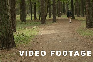 Woman walks in the park. Autumn daytime. Smooth wide dolly shot