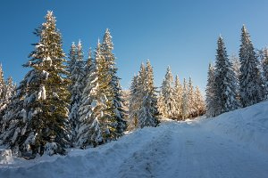 Winter scenery in the mountains
