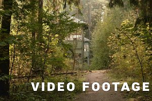 Walkway to the deserted house in the forest. Autumn daytime. Smooth dolly shot