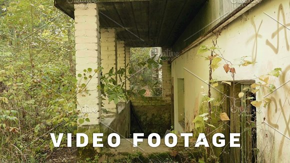 Wall Of The Deserted Factory In The Forest Autumn Daytime Smooth Dolly Shot