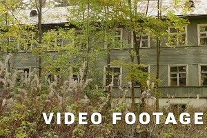 Overgrown house in the forest. Autumn daytime. Smooth dolly shot