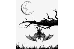 Bat is hanging on a branch