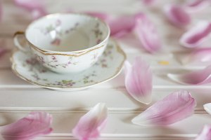 Teacup and Tulip petals