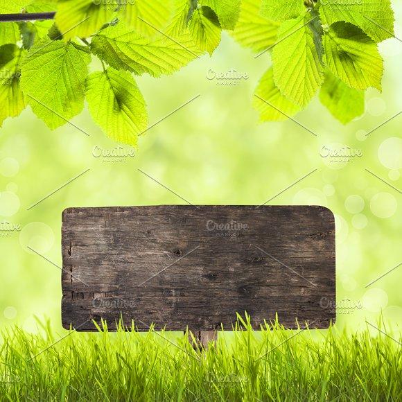 Wooden Plate Over Green Grass