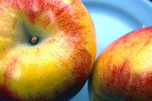 Organic Apples Macro
