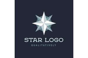 Star Polaris sharp white flat style lights twinkle quality mark logo icon modern vetore