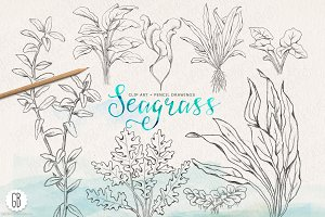 Vintage inspired seagrasses original